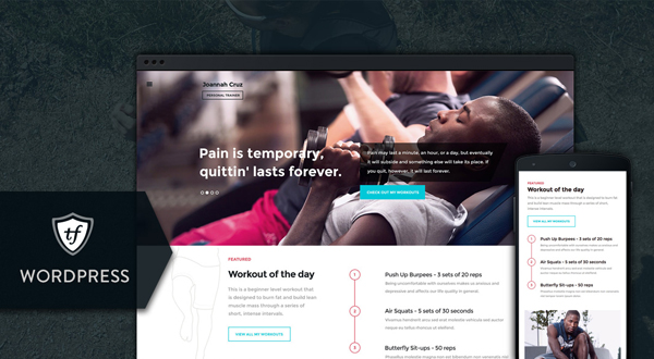 In Shape WordPress theme