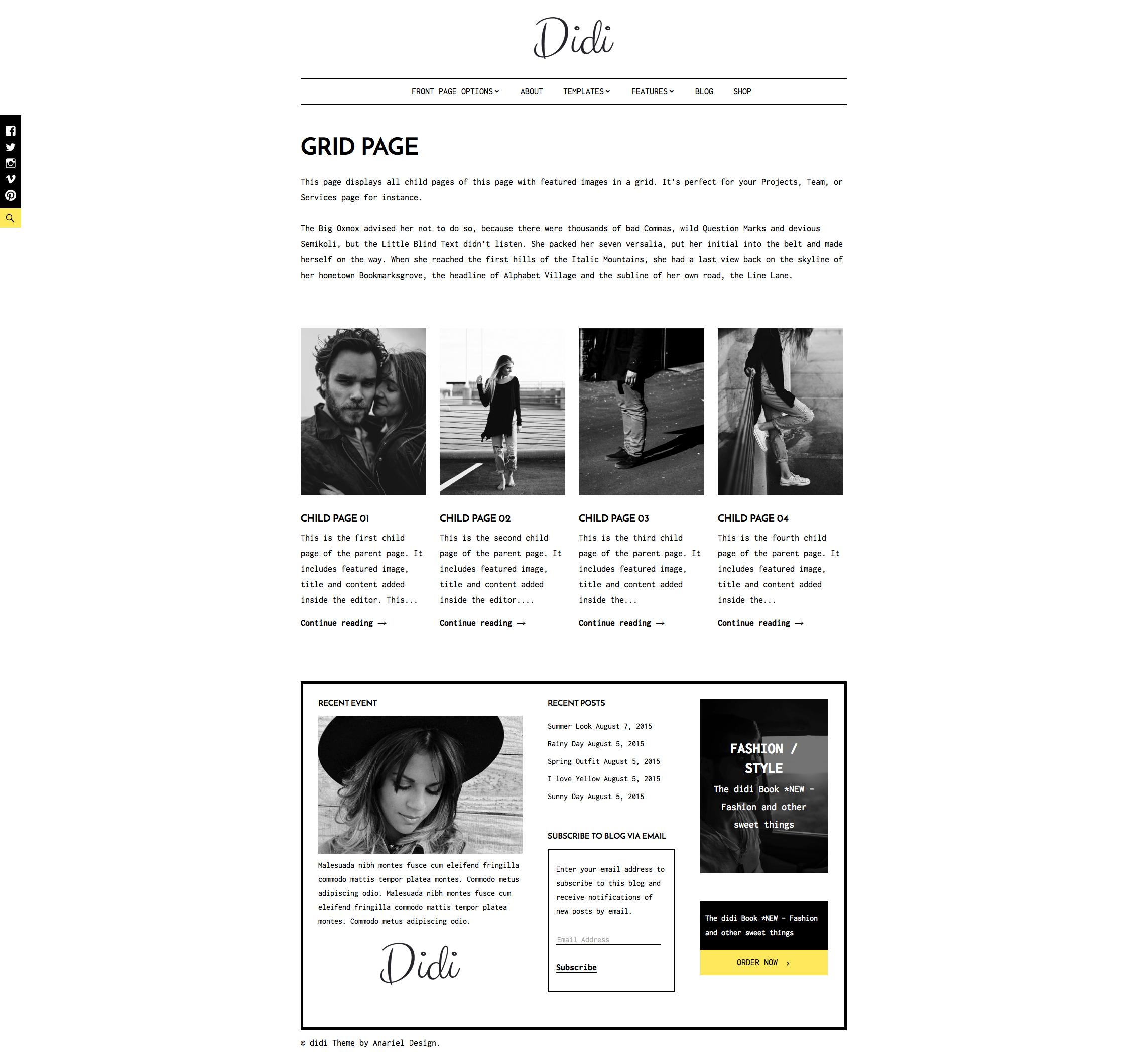 didi wordpress theme help