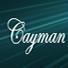 Cayman - Multi-Purpose WordPress Theme
