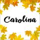 Carolina - An Elegant and Stylish WordPress Blog Theme