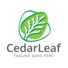 Cedar Leaf Logo