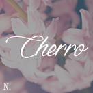 Cherro - WordPress Theme for Bloggers