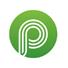 Pro Studio Letter P Logo
