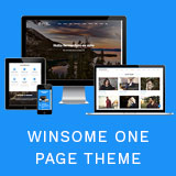 Winsome Pro