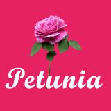 Petunia - HTML