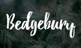 Bedgebury - A Stylish Modern WordPress Theme