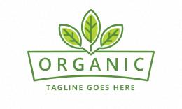 Organic - Leaves Logo