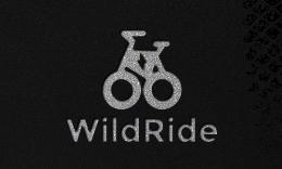 WildRide - Creative Startup WordPress Theme
