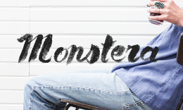 Monstera - WordPress Blog + Ecommerce Theme