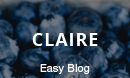 Claire - Elegant & Personal Blog Wordpress Theme