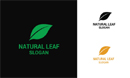 Natural Leaf Logo