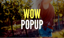 WowPopup - Popup WordPress Plugin