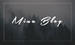 Mina - A WordPress Blog Theme