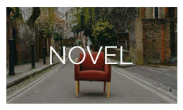 Novel - Author's WordPress Theme